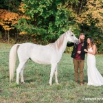 Akron Wedding Planner